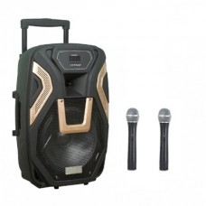 Комбик колонка с Bluetooth и Двумя радио микрофонами